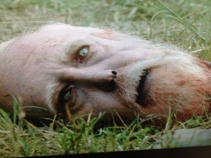 I knew the Gov didn't finish the job and give Hershel a proper rekill... such a dick!