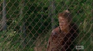 walker carol at the fence