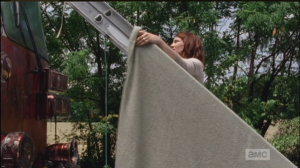 Using the ladder and a blanket from the fire truck, Maggie thoughtfully shieldsEugene, and his mullet, from the hot sun...nobody wants the mullet to get a sunburn!