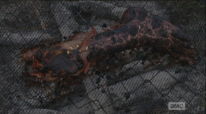 Bob's charred leg, on the Terminans' makeshift grille, with maggots crawling over it.