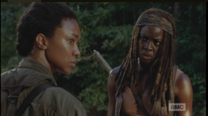 Michonne knows too well what is going on, here.