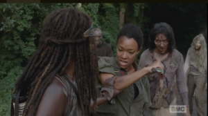 michonne grabs sasha's arm