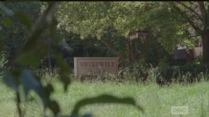 shirewilt sign, no spotter