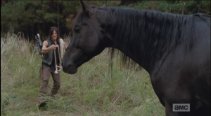 Daryl begins to approach Buttons cautiously, talking softly to the horse.
