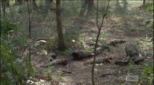 Disembodied arms and legs lay scattered about...it looks like they were severed cleanly, like the arms and torsos Rick, Michonne, and Glenn Who did this, and how...and, why?