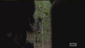 From inside the tree, Carl and Enid watch the group of walkers pass...