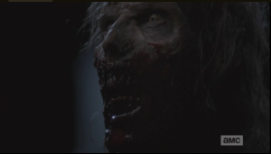 We see the walker's face just before a single bullet from Sasha's gun blows its head to bits.