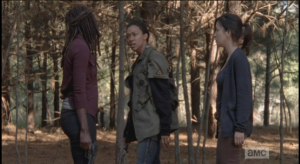 Sasha glares at Michonne.