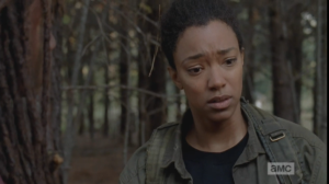 Sonequa Martin-Green plays it beautifully as Sasha silently rides out a wave of realization and sadness at this statement. Nobody says anything.  After a moment, Sasha stalks off, Rosita following her, after exchanging a last look with Michonne.