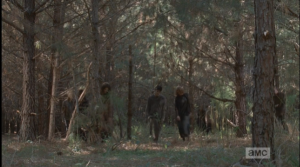 Ahead, in a clearing, a sizable group of walkers approaches...
