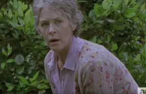 Carol, crouched behind a bush, watching...