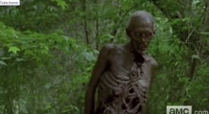 I have been thinking that Greg Nicotero must be using some extremely thin individuals to play some of these walkers...the makeup and styling here is just incredible.
