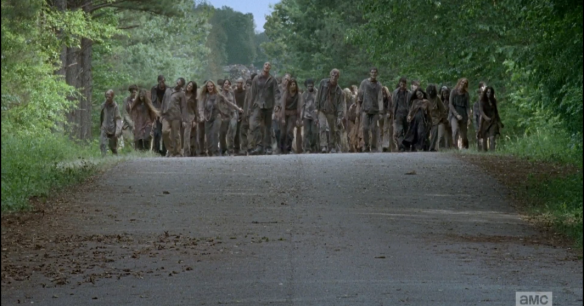 Here comes the Parade of Walkers.