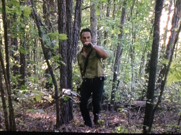 Rick can see the walkers are veering off from the road, but doesn't yet know why...he radios Tobin, then rushes to see what is happening...