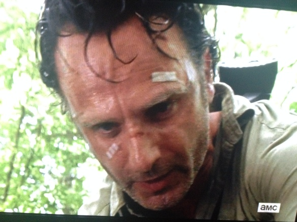 Rick Grimes, once again, doing what must be done, tireless against these grim, horrible, unrelenting times. We love you, and we believe in you, Rick Grimes!