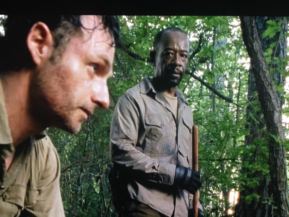 Once again, Rick looks up from killing a man, to see Morgan there, looking all judgy and horrified. It's like, What? He was fucking bitten, and he was fucking screaming, and there are like a million fucking walkers out there. Sue me.